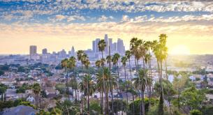 Top Allergy-Friendly Restaurants in LA